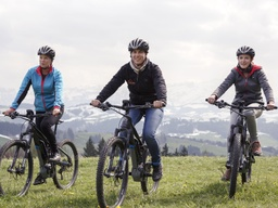 E-Mountain-Bike Tagesmiete