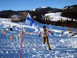 Finnish Winter Games